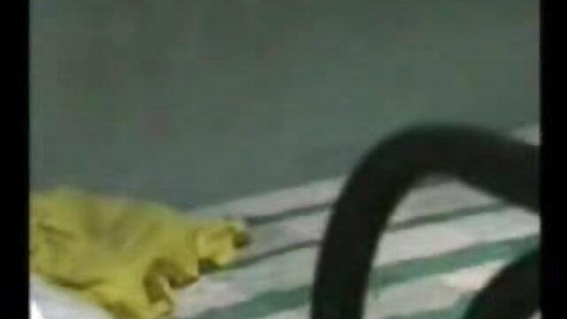 क्रेजी गर्ल्स सोनाक्षी सिन्हा सेक्सी मूवी अपने बूब्स को पब्लिक में फ्लैश करती हैं